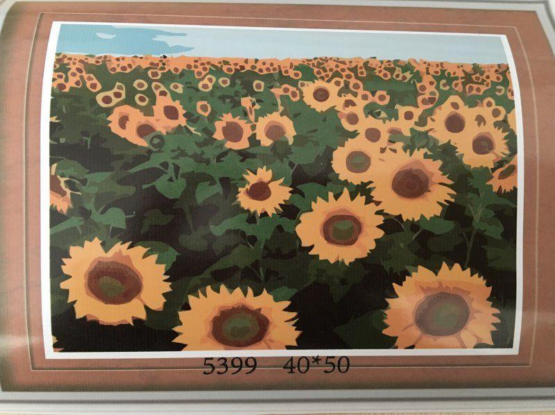 Malování podle čísel na plátno - pole plné slunečnic