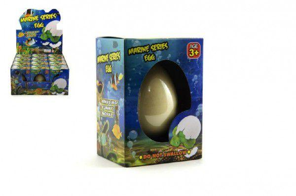 Fotografie Mořský svět líhnoucí a rostoucí z vajíčka 6cm v krabičce 12 ks boxu